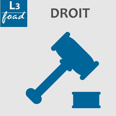 Logo Licence 3 droit 20-21