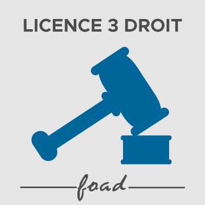 Logo Licence 3 FOAD 21-22